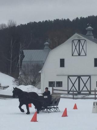 Cones sleigh